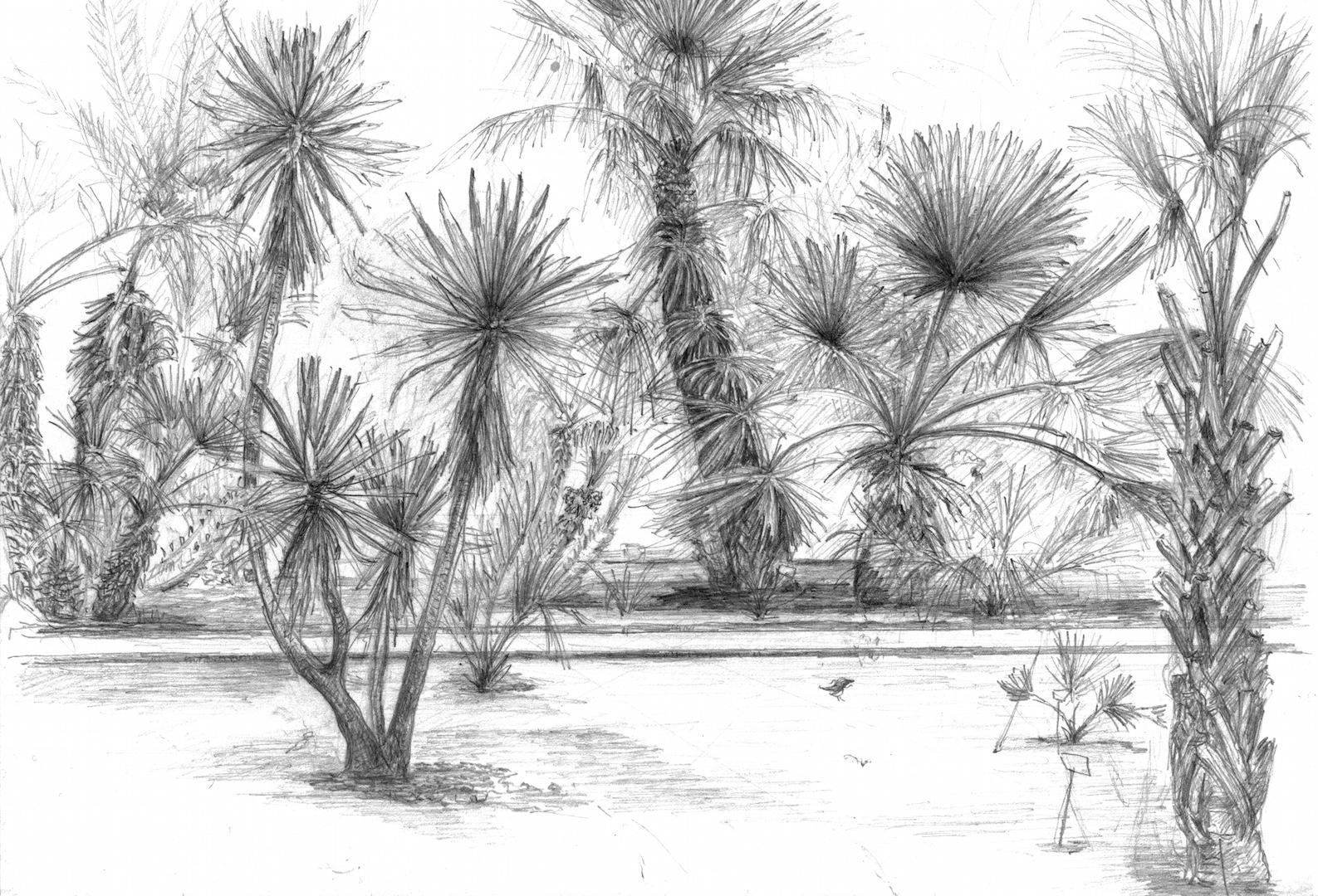Orto Botanico 2010
